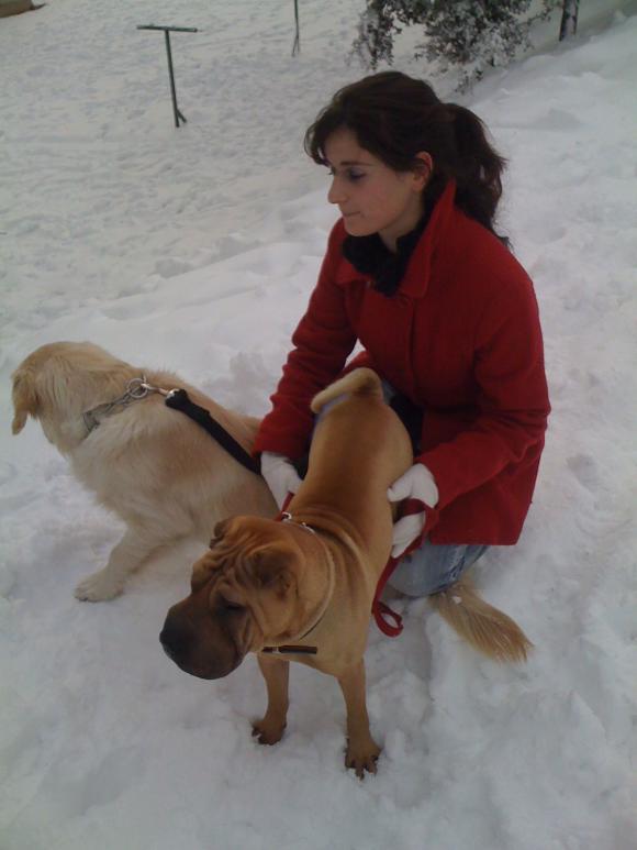 http://loralorapa.cowblog.fr/images/IMG0982.jpg